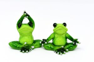 frogs-3095285_1280